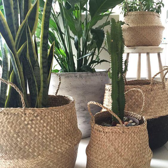 Bộ 4 giỏ cỏ bàng decor cover chậu cây trang trí nhà 1