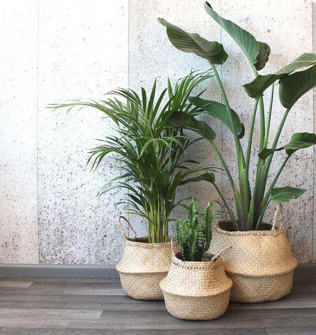 Bộ 3 Giỏ cỏ bàng Decor đựng chậu cây trang trí nhà size 30-35-40