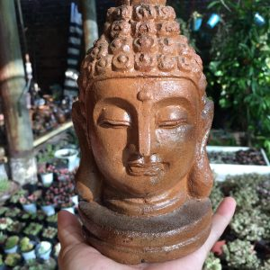 Gốm Đất Nung Hình Phật Decor 1