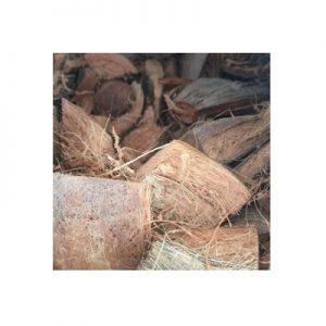 Bành dừa trồng lan (kg)