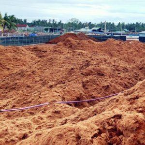 Bán Sỉ Mụn Dừa Đã Qua Xử Lý đạt tiêu chuẩn xuất khẩu - cocopeat 1