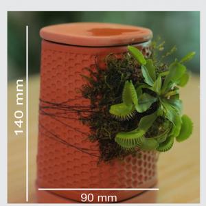 Tháp cây đứng mini – PlantR